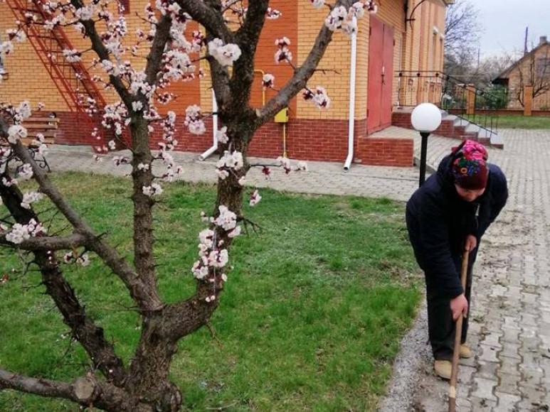 У Любешівській районній філії центру зайнятості провели «День довкілля»