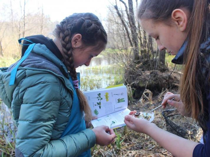Школярі досліджують лісову річку