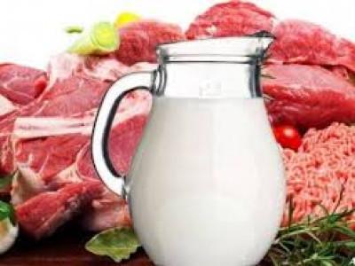 М'ясо-молочна продукція