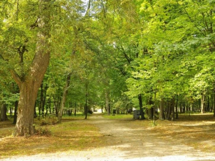 Любешівський парк