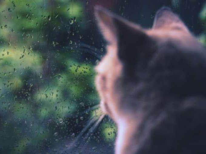 Погода / Фото ілюстртивне