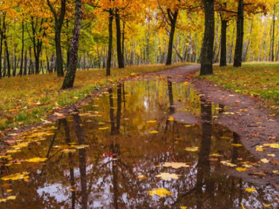 Після дощу у вересні