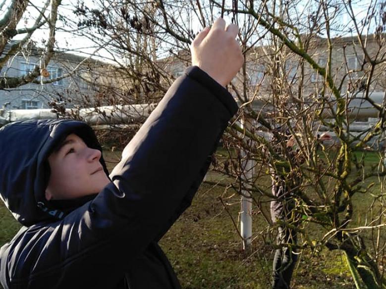 Учні із задоволенням розвішували на деревах корм