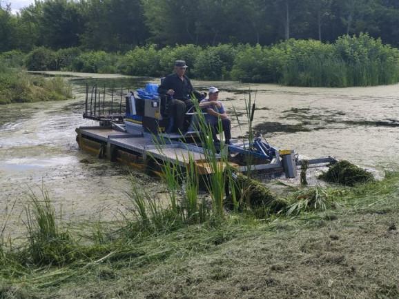 Канали в парку розчищає амфібія