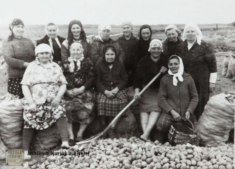 Накопали картоплі в колгоспі. 1970-ті р.