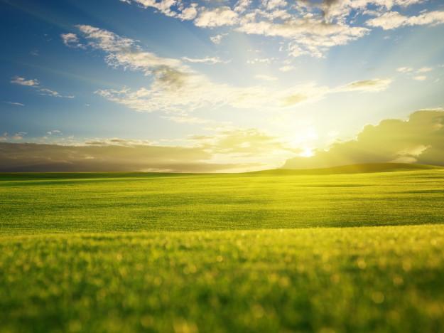 Любешівській об'єднаній територіальній громаді передадуть 6 335 га земель сільськогосподарського призначення державної власності