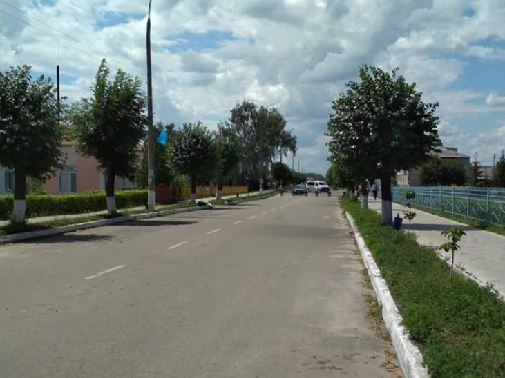 Центральна вулиця Любешова