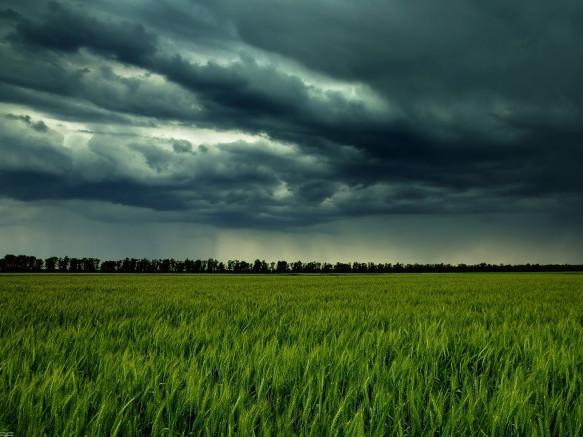 Погода в Любешові