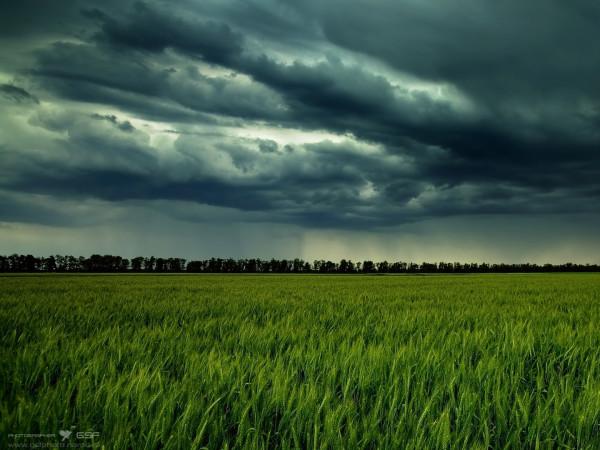 Погода у Любешові
