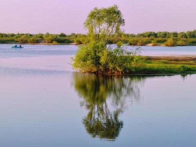 Національний природний парк «Прип'ять – Стохід»