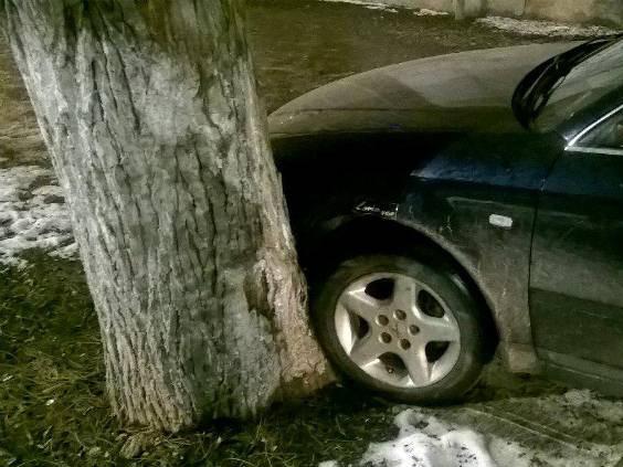 Наїхав на дерево