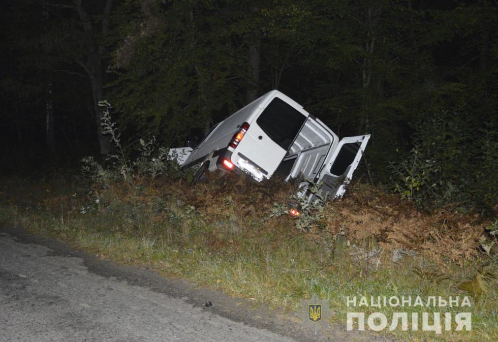 Автомобіля знесло в кювет