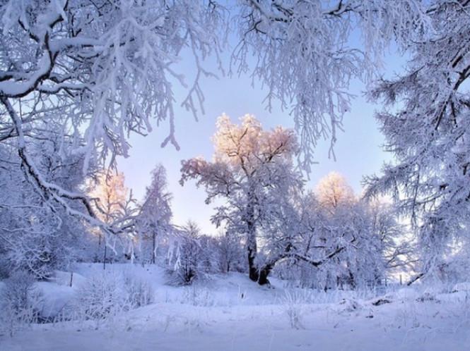 Синоптики розповіли, коли в Україні буде по-справжньому холодно