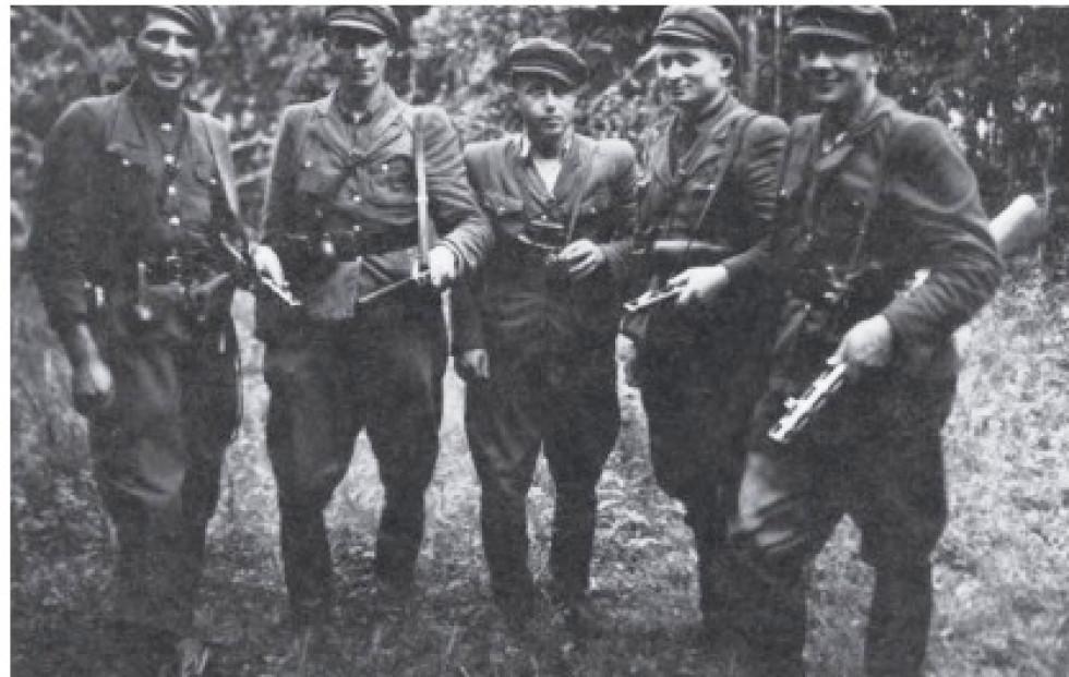 Волинські повстанці